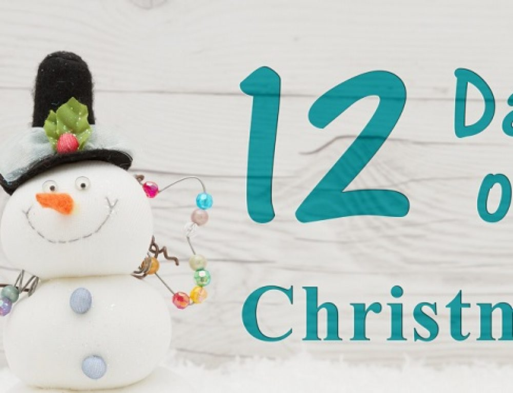 The twelve days of Christmas at Beauty Spot